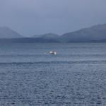 Utsikt innseilin Bergen